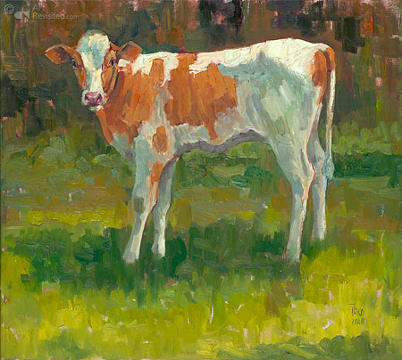 Holsteiner kalf rood