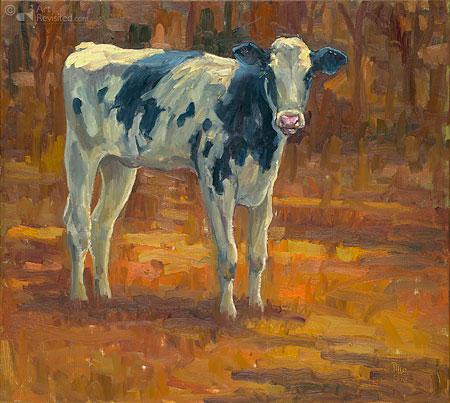 Holsteiner kalf zwart