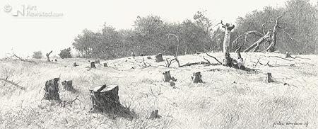 Op de Strabrechtse Heide 3