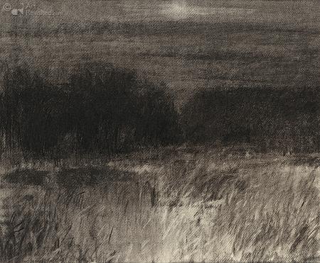 Nacht: oplichtend gras