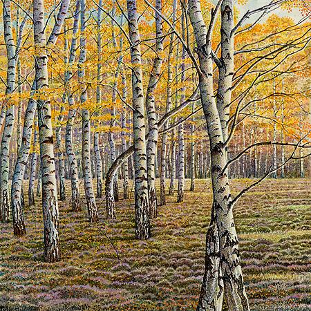 Vier seizoenen - herfst