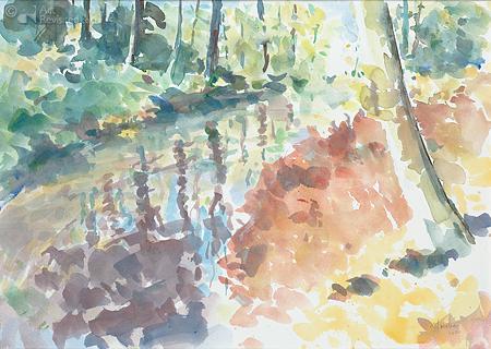 Boomwal in de Herfst
