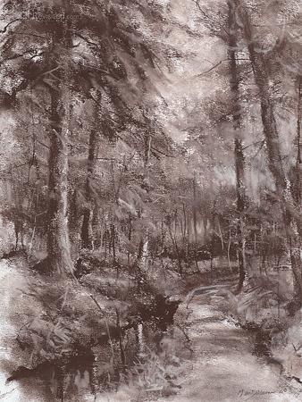 Uitgesleten bospad