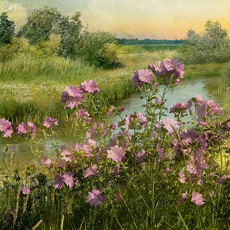 Landscape_Flowers #02