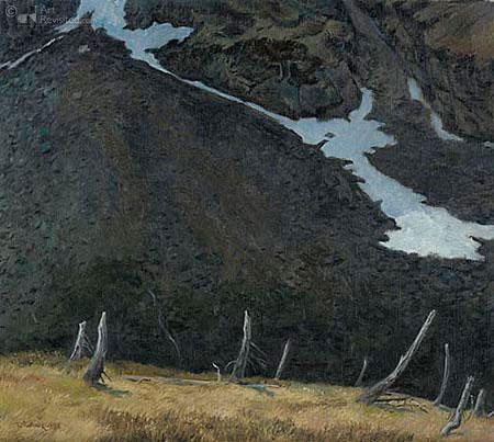 Herinnering van een lawine (Franse Alpen)