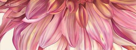 Dahlia met paarse randen
